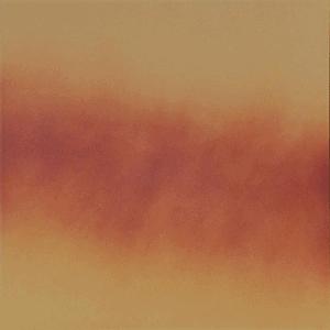 Płytka podłogowa Cerrad Liść Jesienny 300x300x11mm 15296