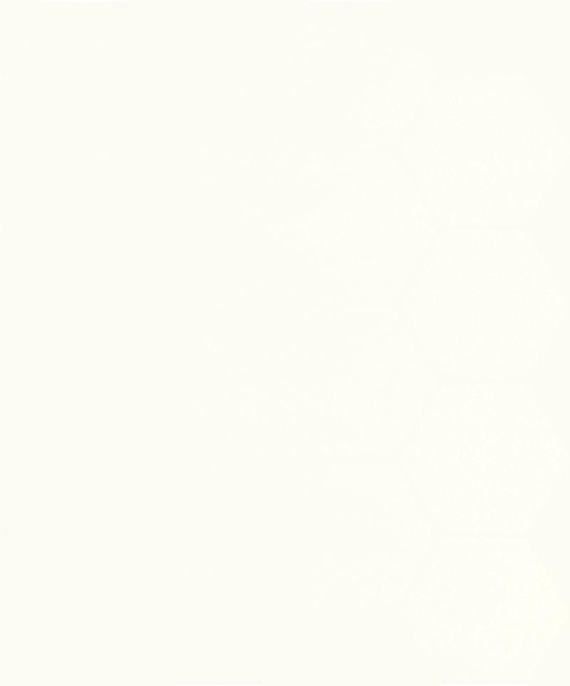 Uniwersalna Mozaika Prasowana Paradyż Bianco Hexagon 22x25,5cm M-P-220X255-1-UNIW.BIHE