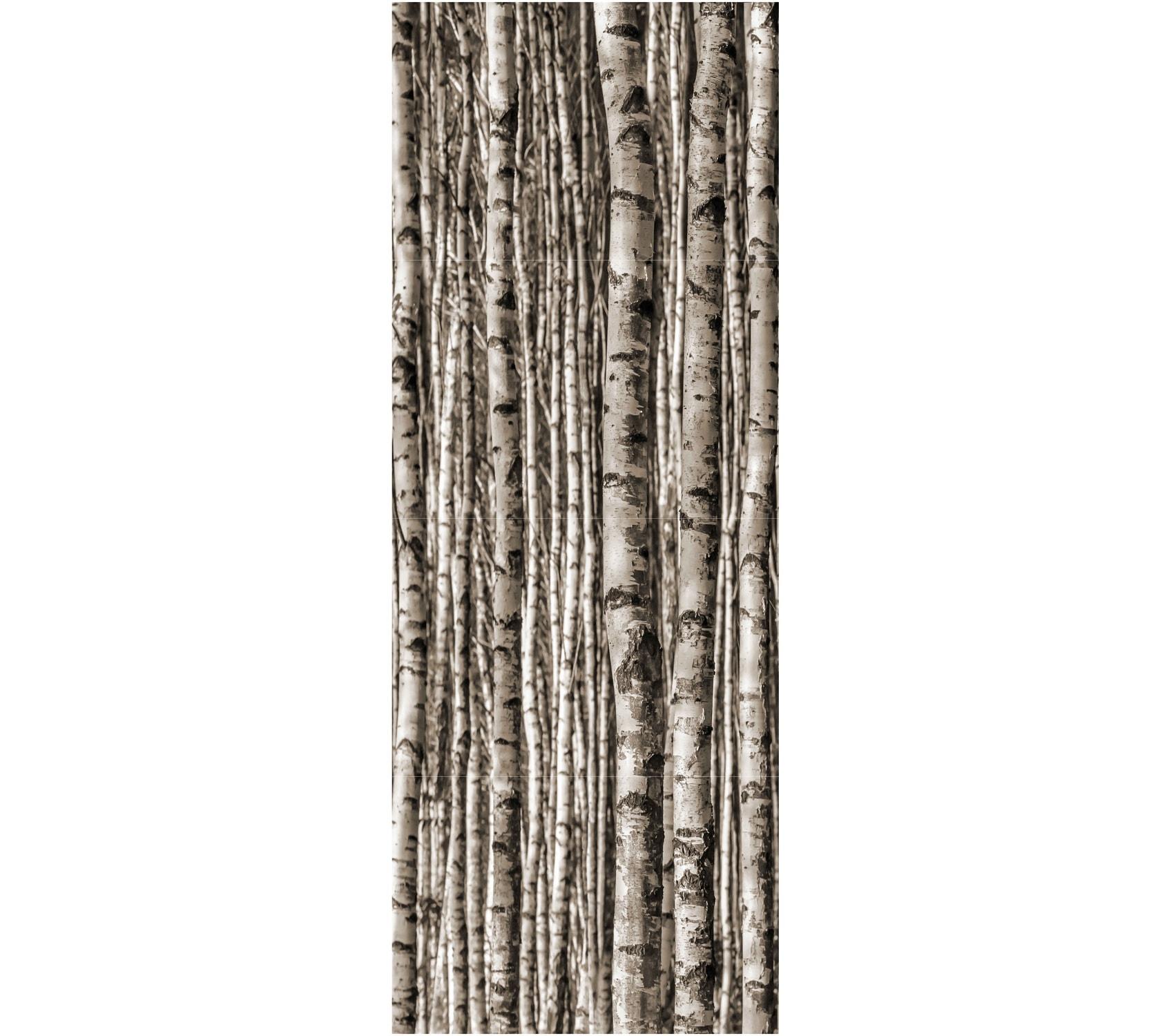Dekor ścienny Tubądzin Birch 89,8x239,8cm tubDekBir90x240