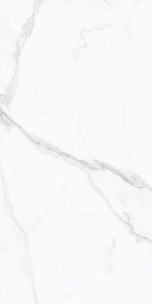 Płytka podłogowa AB Status satyna 120x240 cm