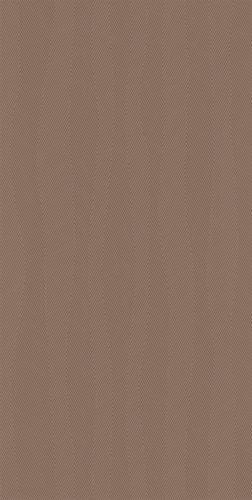 Płytka ścienna Paradyż Calm Taupe Ściana Rekt. Dekor Połysk 29.8 x 59.8 cm S-R-298X598-1-CALM.TADE