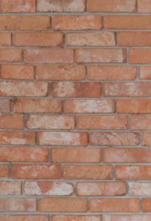 Lico Toruńskie Stare Cegły - Płytki z oryginalnych XIX wiecznych cegieł