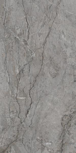 Płytka  podłogowa Paradyż Visioner Grey Poler 60x120 cm