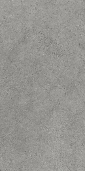 Płytka podłogowa Paradyż Authority Grey Mat 60x120 cm